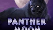 игровой автоматическое устройство Panther Moon