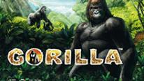 Игровой автоматическое устройство Gorilla